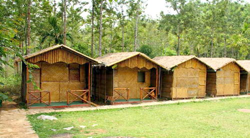 Bamboo Jungle House Bed Breakfast