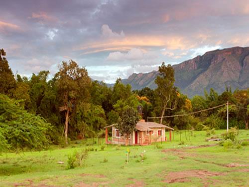 Secret Ivory Farm And Guest House Masinagudi Resorts
